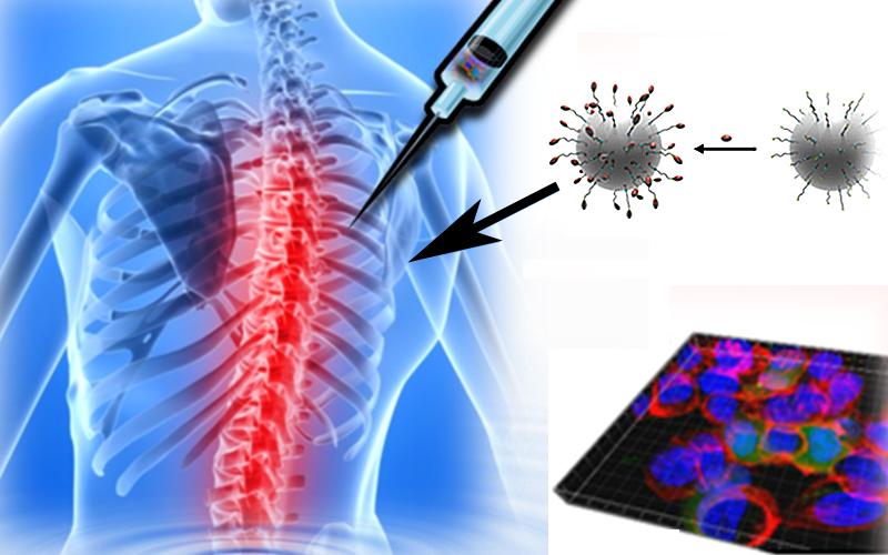 En la superficie de las nanopartículas se pueden disponer prácticamente cualquier molécula  que aporte una o varias funcionalidades, como por ejemplo, moléculas fluorescentes para bioimagen o transportadoras de fármacos.