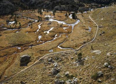 Turberas de los Plans de Sotllo en la Vall Ferrera.