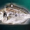 Alert system to improve the production of farmed fish