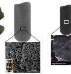 Ultralight, elastic and highly porous graphene oxide aerogels