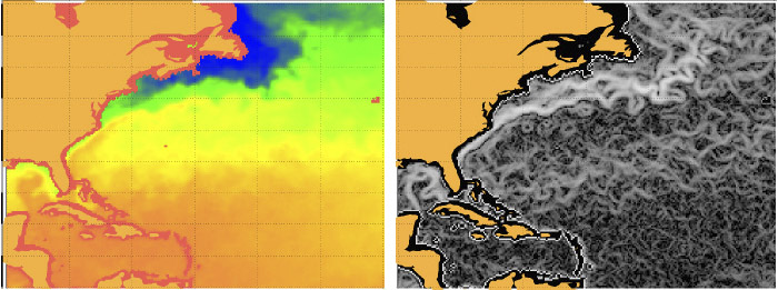 'We can even identify the ocean currents (right picture) just from a single temperature sea surface image (left)'